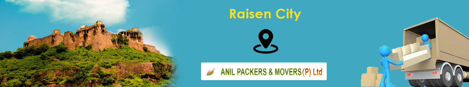 Packers and Movers in Raisen
